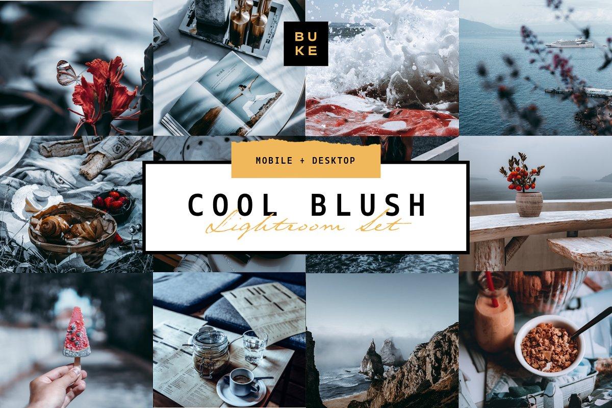 5 Cool Blush Lightroom Presets Pack