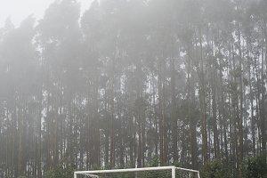 Muddy soccer field