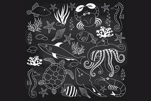 Chalkboard Sea Life