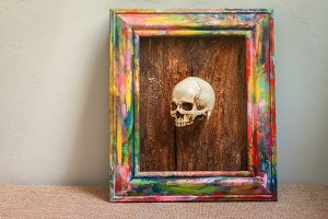 Tiny skulls in colorful wooden frame