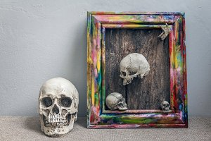 Set of tiny skulls in colorful frame