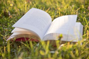 Autumn background with open book