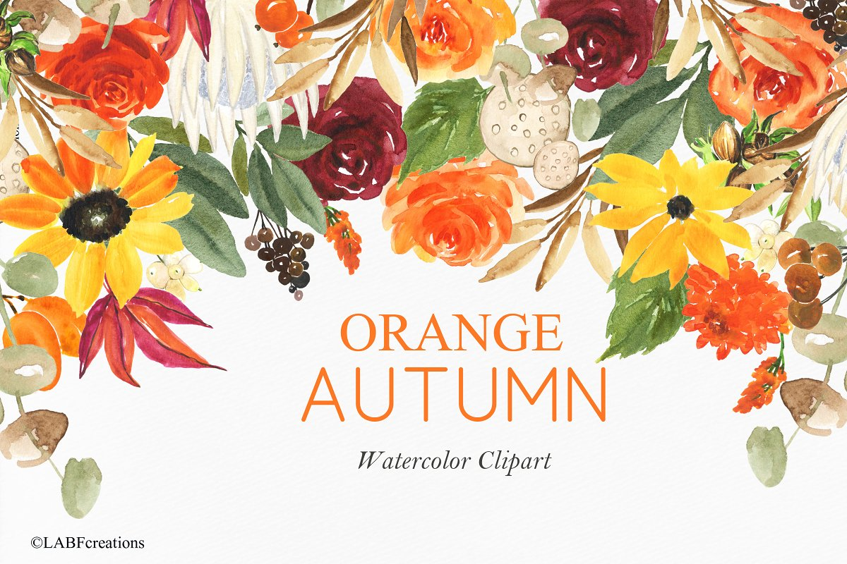 Orange Autumn Watercolor Flowers Custom Designed Illustrations