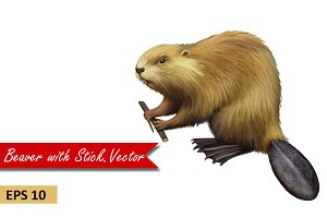 Beaver holding branch. Vector
