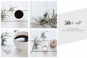 50% OFF | Rustic Christmas & Holiday