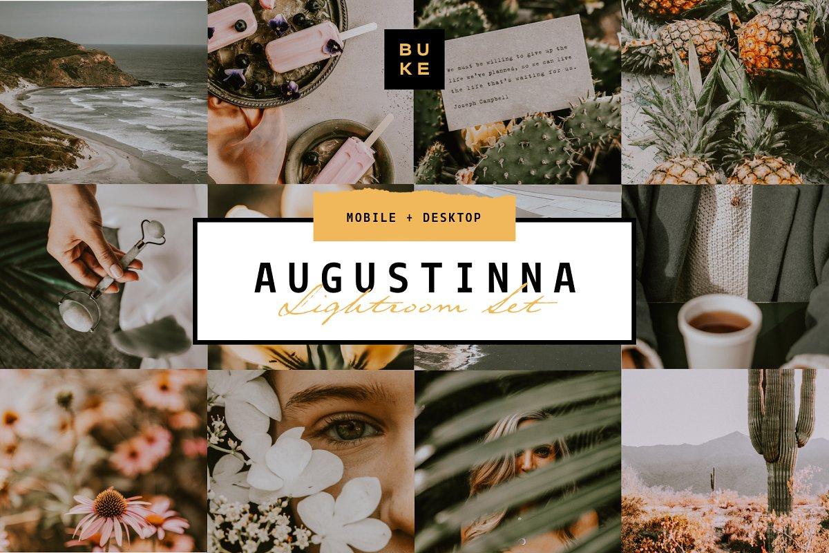Augustina Lightroom Preset