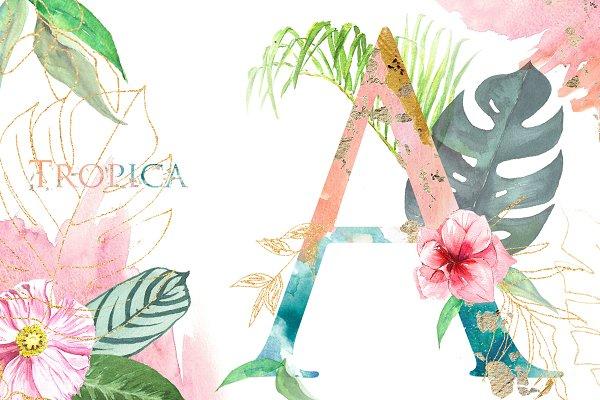Tropical Watercolor Alphabet Letter