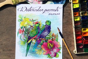 Set of watercolor card with parrots