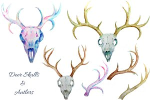 Watercolor Deer Skull clipart