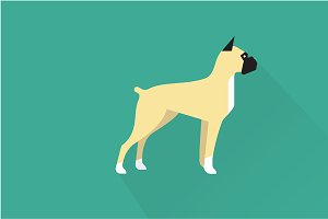 Boxer dog icon