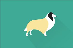 Collie dog icon