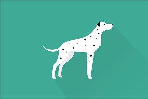 Dalmatian dog icon