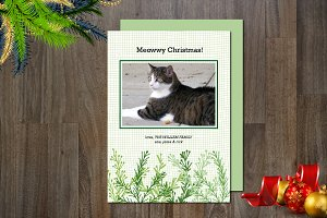 Holiday Meowwy Photo Card