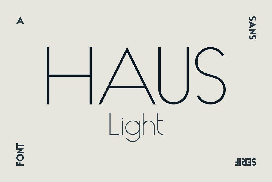 HAUS Sans Ultra Light ~ Sans Serif Fonts ~ Creative Market