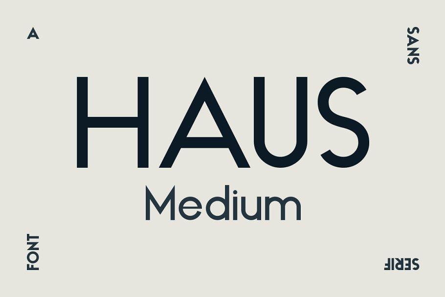 dh sans medium font free download