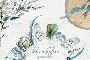 Boho Feathers Watercolor Collection