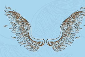 Angel wings hand drawn set