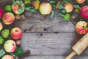 Autumn border of apples
