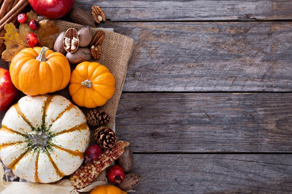 Pumpkins and nuts fall copy space