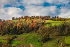 autumnal landscape