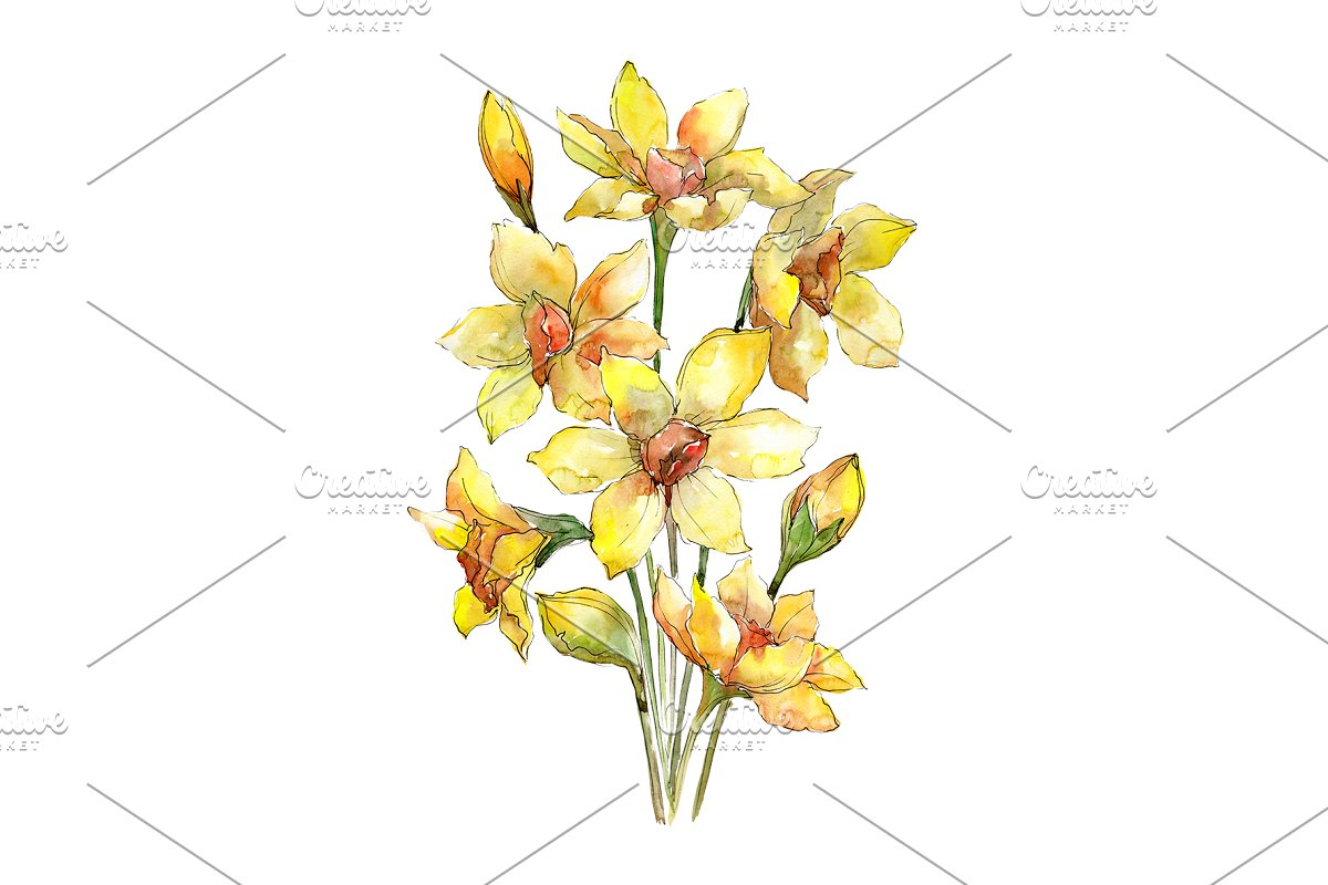 Bouquet of narcissus yellow flower
