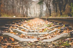 Autumn Railroad - Leaf Fall
