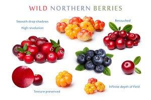 Set of wild northern berries