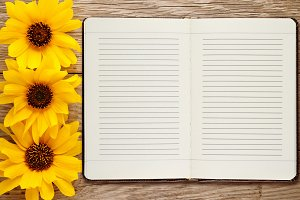 Diary and ornamental sunflowers