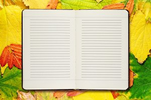 Open diary on autumn leaves
