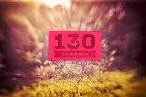 130 Stock Photos