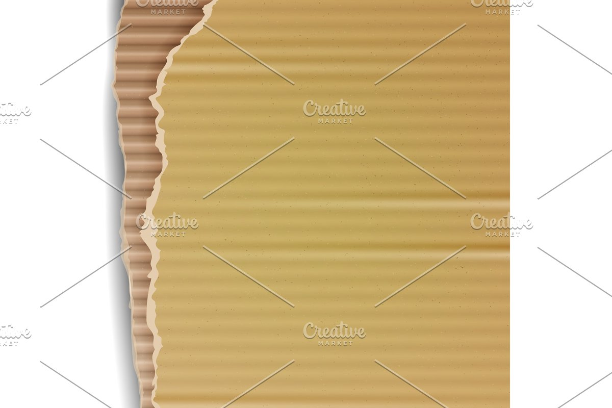 Corrugated Cardboard Vector