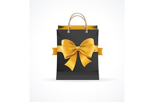 Paper Bag and Ribbon Present Concept