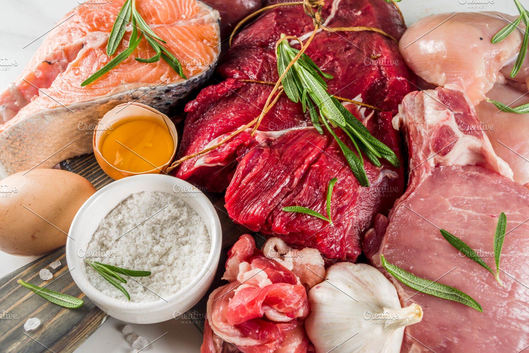 Carnivore protein diet background