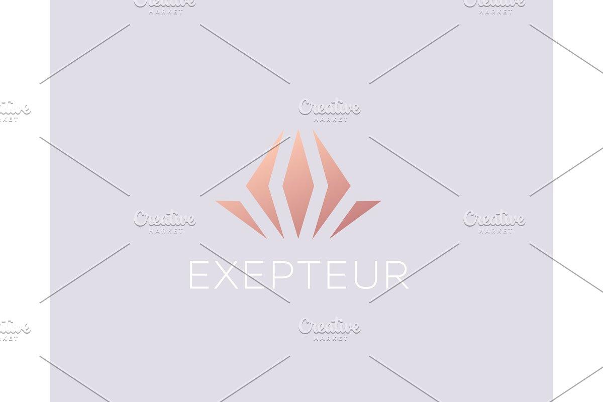 Flower gem logo design abstract