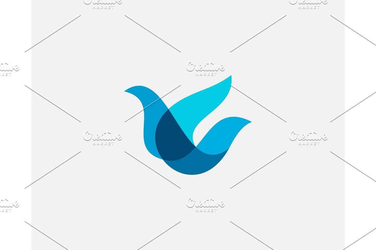 Bird logo design abstract modern