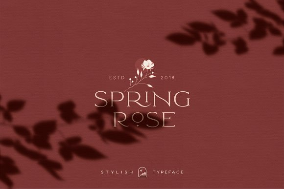 Elegant Karin - Stylish Typeface in Serif Fonts - product preview 16