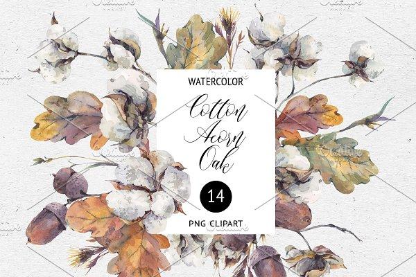 Fall Clipart, Watercolor Cotton, Oak