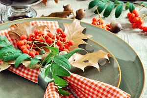 Thanksgiving or autumn table setting