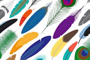Feathers seamless background