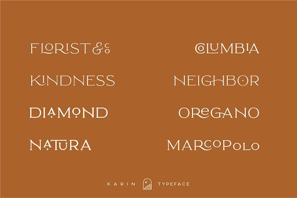 Elegant Karin - Stylish Typeface in Serif Fonts - product preview 22