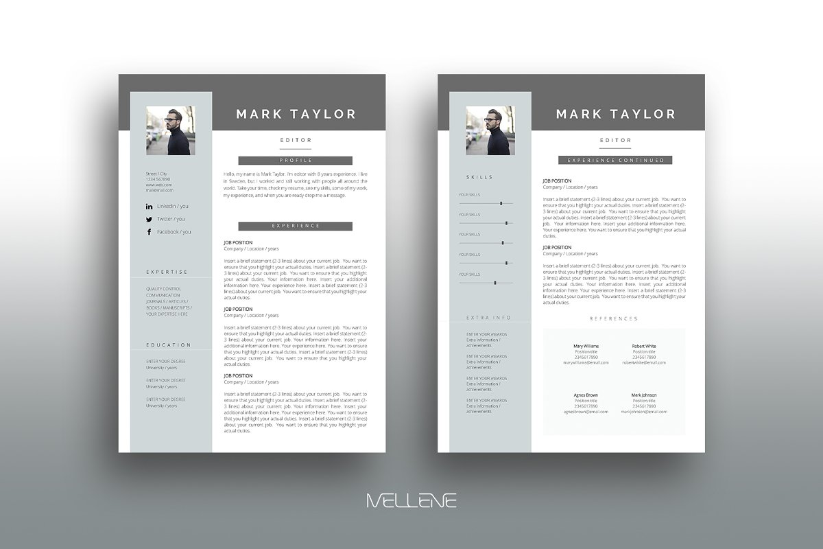 Cv Resume Template For Ms Word
