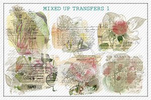 Mixed Up Transfers 1