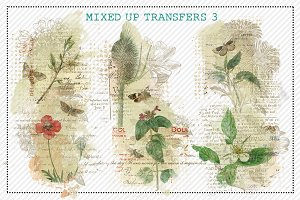 Mixed Up Transfers 3