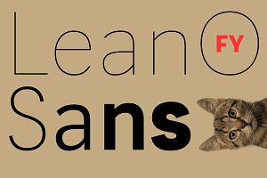 LeanO Sans FY Family (5 fonts)
