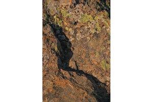 Rock Texture 3 (Photo)