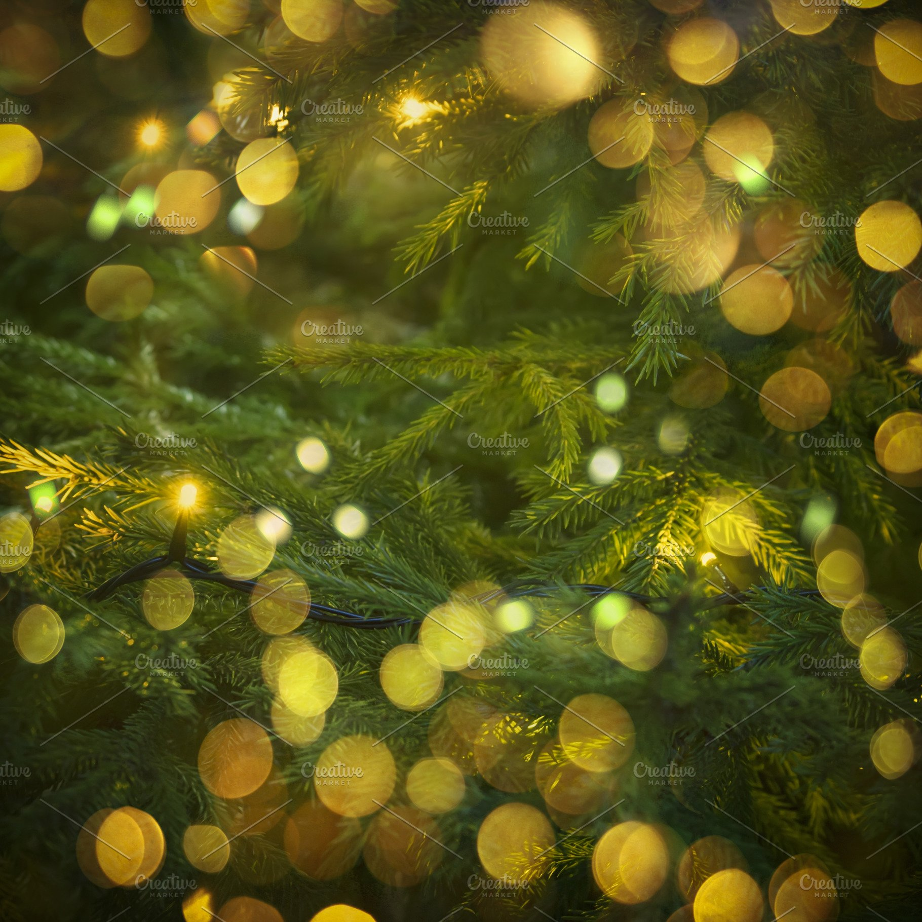 Green Christmas Lights.New Year Or Christmas Fir Background