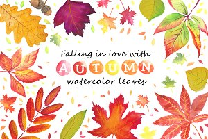 Autumn leaves. Watercolor.