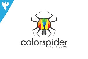 Color Spider Logo