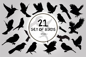 21 Set of birds silhouettes vector