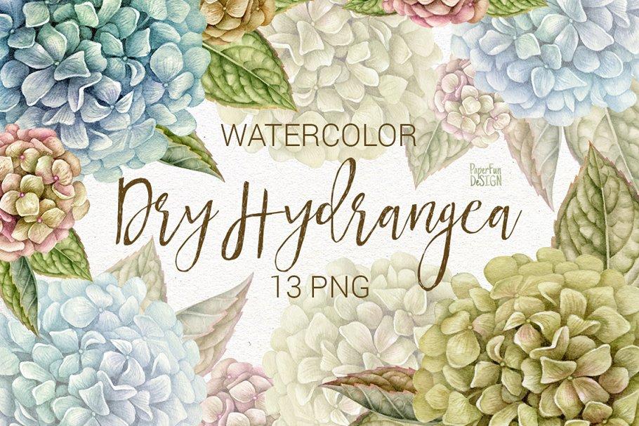 Watercolor hydrangeas clipart.